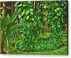 Acrylic Print featuring the photograph Mexico Greenery by Tammy Sutherland