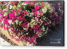 Acrylic Print featuring the photograph Mexico Memories 4 by Victor K