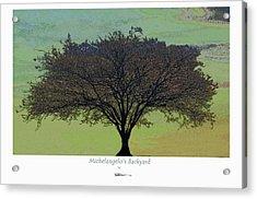 Michelangelo's Backyard Acrylic Print
