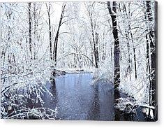 Michgan Winter 10 Acrylic Print by Scott Hovind