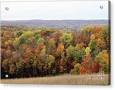 Michigan Autumn Acrylic Print