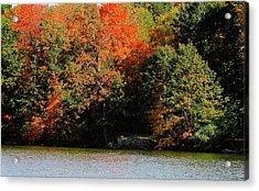 Michigan Fall Colors 5  Acrylic Print by Scott Hovind
