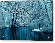 Michigan Winter 14 Acrylic Print