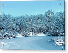 Michigan Winter 6 Acrylic Print