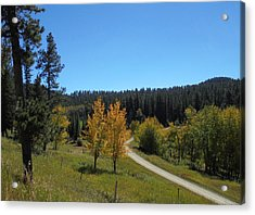 Mickelson Trail Acrylic Print