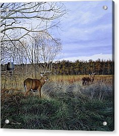 Take Out - Deer Acrylic Print