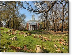 Middle College On An Autumn Day Acrylic Print
