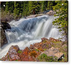 Middle Fork Falls Acrylic Print by Dennis Wagner