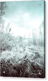 Middle Of Snowhere Acrylic Print by Jorgo Photography - Wall Art Gallery
