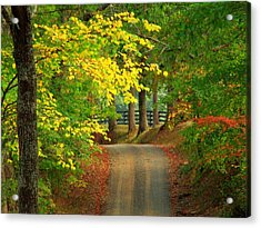 Middleburg Road Acrylic Print