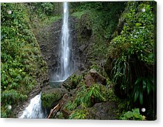 Middleham Waterfall In Dominica Acrylic Print by Tropical Ties Dominica