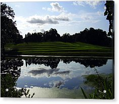 Middleton Place II Acrylic Print by Flavia Westerwelle