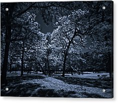 Acrylic Print featuring the photograph Midnight Blues by Linda Unger