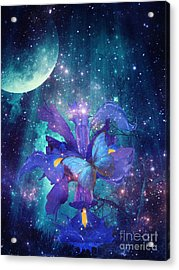 Midnight Butterfly Acrylic Print by Mo T