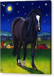 Midnight Horse Acrylic Print
