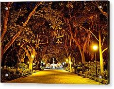 Midnight In The Garden Acrylic Print