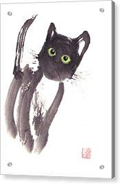 Midnight Acrylic Print by Mui-Joo Wee