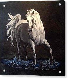 Midnight Prance Acrylic Print by Glenda Smith