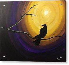 Midnight Raven Acrylic Print