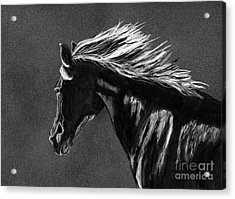 Midnight Ride Acrylic Print