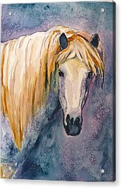 Acrylic Print featuring the painting Midnight Stallion by P Maure Bausch