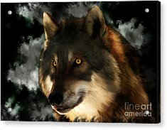 Midnight Stare - Wolf Digital Painting Acrylic Print