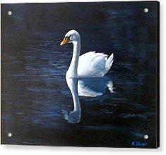 Midnight Swan Acrylic Print