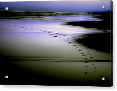 Acrylic Print featuring the photograph Midnight Swim by Gray  Artus