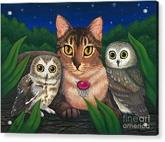 Acrylic Print featuring the painting Midnight Watching - Abyssinian Cat Saw Whet Owls by Carrie Hawks