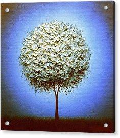 Midnight's Call Acrylic Print by Rachel Bingaman