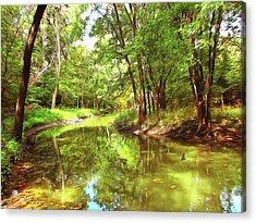 Midsummer Dream Acrylic Print