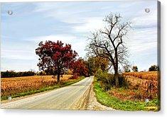 Midwest Autumn  Acrylic Print
