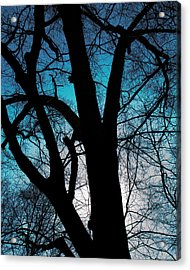 Might Oak 16x20 Acrylic Print
