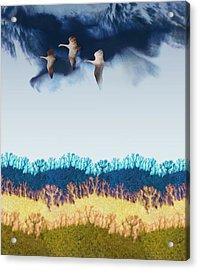 Migration Acrylic Print by Varpu Kronholm