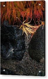Acrylic Print featuring the photograph Miksang 5 Autumn by Theresa Tahara