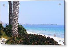 Mil Palmeras Beach Acrylic Print by Jacqueline Essex