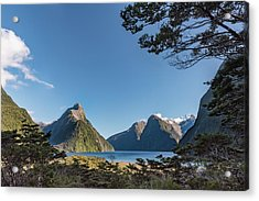 Acrylic Print featuring the photograph Milford Sound Overlook by Gary Eason
