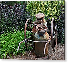 Milk Pails Acrylic Print by Judy Vincent