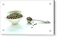 Milk Thistle Seeds Acrylic Print