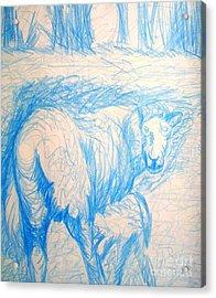 Milking Cow Acrylic Print