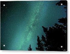 Milky Way Above The Trees Acrylic Print
