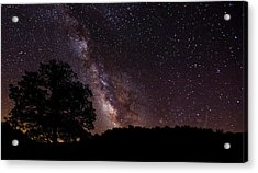 Milky Way And The Tree Acrylic Print