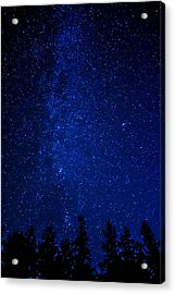 Milky Way And Trees Acrylic Print by Pelo Blanco Photo