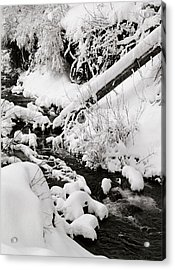 Mill Creek Canyon In Winter Acrylic Print by Dennis Hammer