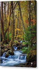 Mill Creek In Fall #1 Acrylic Print