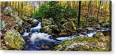 Mill Creek In Fall #4 Acrylic Print