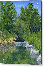 Millrace Pond Acrylic Print by David King