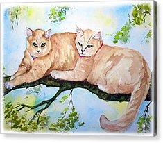 Milo And Timon Acrylic Print by Gina Hall