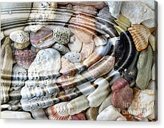 Acrylic Print featuring the digital art Minerals And Shells by Michal Boubin