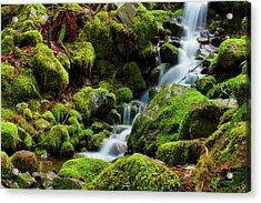 Mini Cascading Waters Acrylic Print